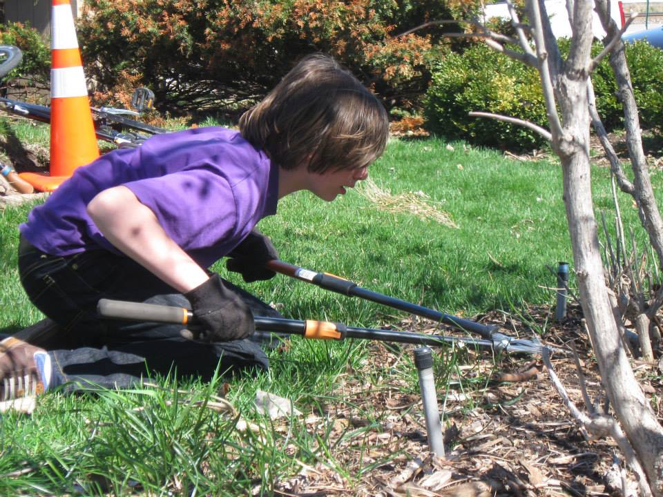 Volunteer pruning